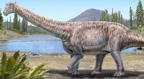 Şili'de yeni dinozor türü keşfedildi