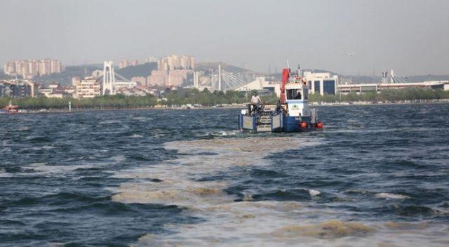 38 günde 100 ton deniz salyası toplandı