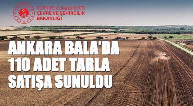 Ankara'da 110 adet tarla satışa çıkarıldı