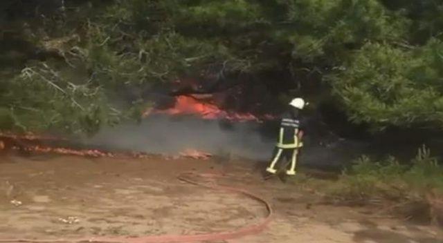 Antalya'da bunalıma giren genç hem kendini hem ormanı yaktı