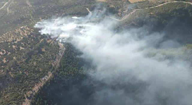 Bodrum'daki ormanlık alanda çıkan yangın söndürüldü