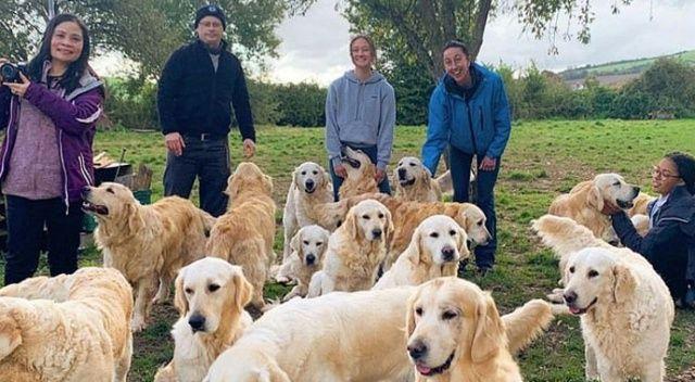 Bu parkta köpek sevmek ücretle