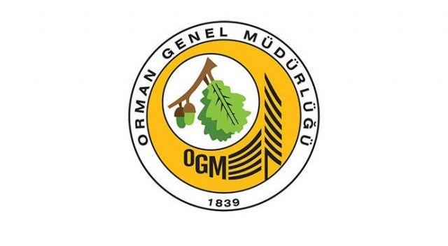 İstanbul'da mesire alanı kiraya verilecek