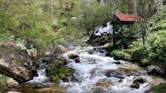 Toros Dağları'ndaki akarsular doğal güzellikleriyle mest ediyor