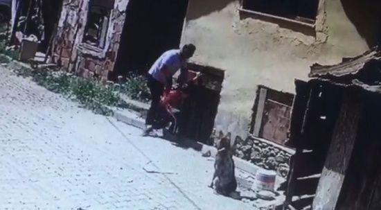 8 yaşındaki çocuğu köpeklerin önüne attı