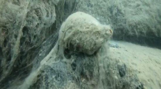 Marmara denizinin altında ölüm kalım savaşı