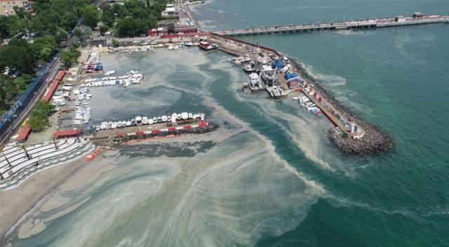 4 bin metreküp deniz salyası temizledik
