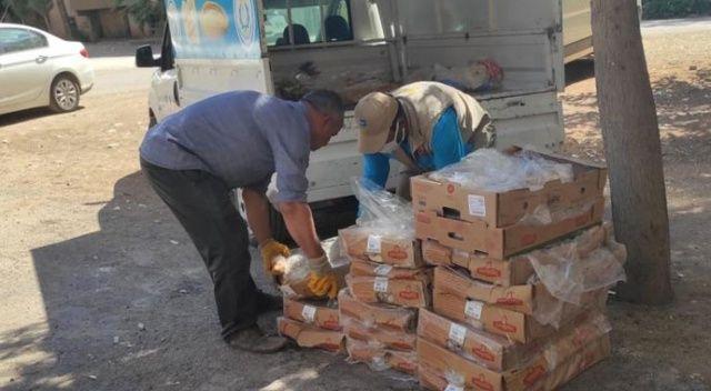 Gıda tacirlerine baskın: Tarihi geçmiş 250 kilogram et bulundu