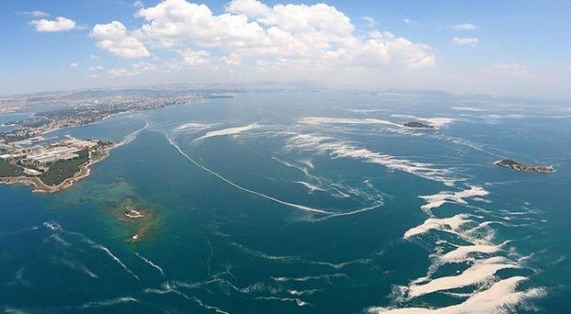 Marmara Denizi'nde 7932 metreküp müsilaj temizlendi
