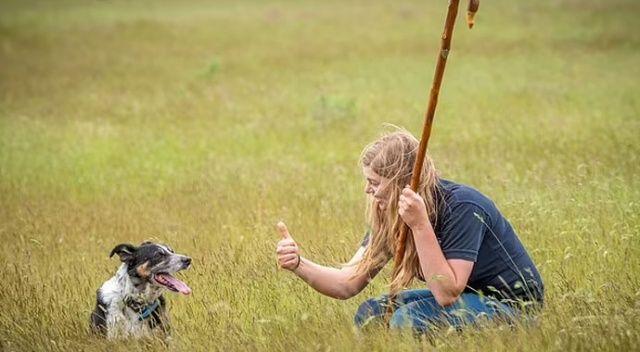 Sağır çoban köpeğine işaret dilini öğretiyor