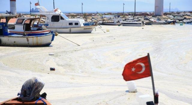 Uzmanlar uyardı: Müsilaj gemilerle temiz sulara taşınabilir
