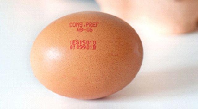Yumurta seçerken kod numarasına dikkat