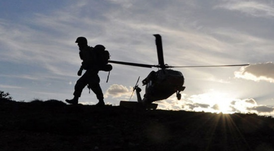 Bitlis'te 2 terörist etkisiz hale getirildi