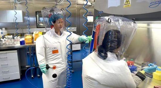 Laboratuvardan sızma teorisini ilk ortaya atan Çinli virolog: Koronavirüs biyolojik silah