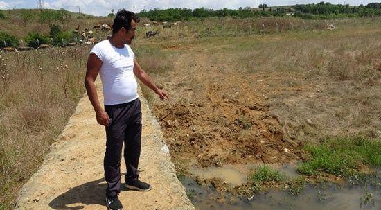 Ömerli Barajı'nda korkutan iddia: Ölen balıklar toprağa gömülüyor