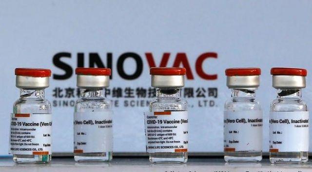 Çin'de araştırma: Sinovac aşıları 6 ay sonra etkisini kaybediyor