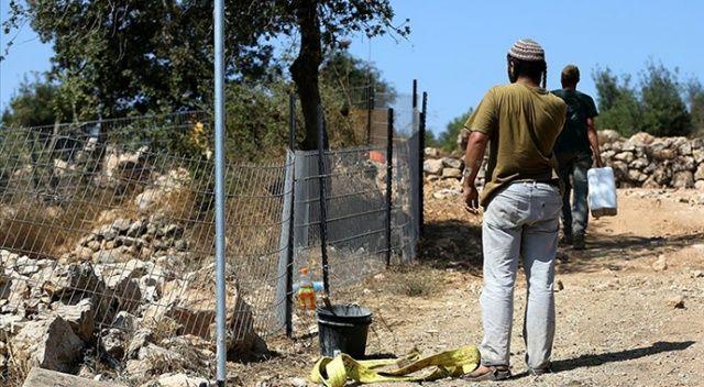 İsrail askerleri, Lübnanlı çobana ateş açıp 500 hayvanını kaçırdı