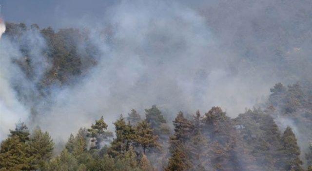 İtalya'nın Sardinya Adası'ndaki yangın: 1500'den fazla kişi tahliye edildi