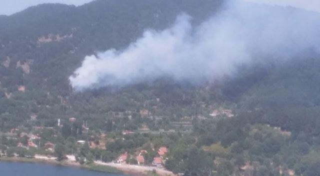 İzmir Ödemiş'te orman yangını! Kontrol altına alındı