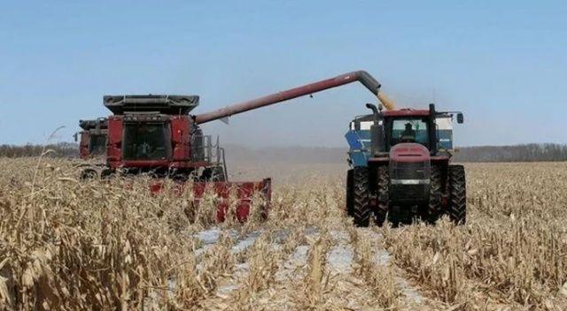 Kanada'da son 20 yılın en kurak dönemi yaşanıyor