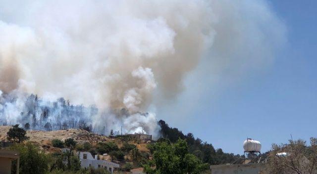 KKTC'de ormanlık alanda çıkan yangın kontrol altına alındı