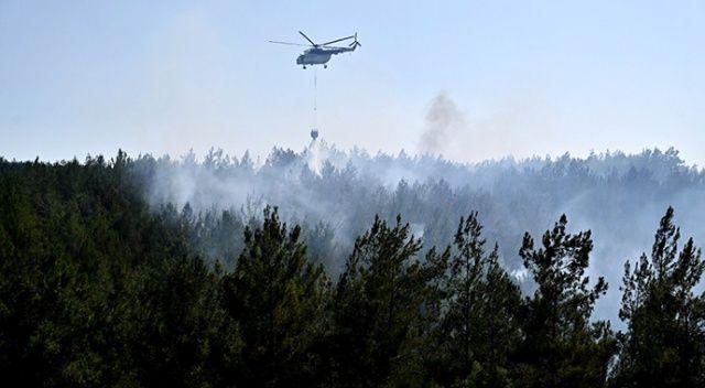 Osmaniye'deki orman yangının sebebi belli oldu: Gözaltılar var