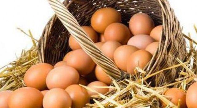 Yumurtayı lisans alanlar üretmeli