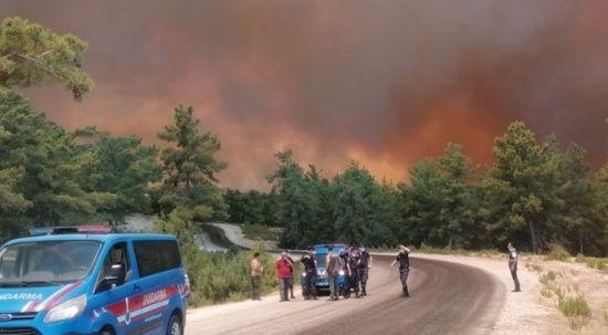 Antalya Manavgat'ta yangın: Yerleşim yerlerine sıçradı
