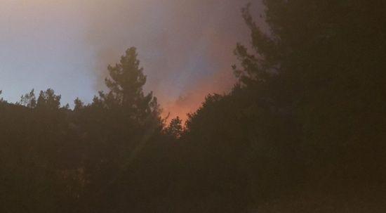 Bir kötü haber de Adana'dan! Yangın büyüyor, evler boşaltılıyor