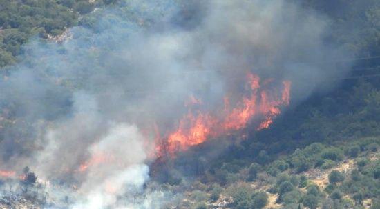 Bodrum'da yangın durmuyor, Belediye Başkanı'ndan halka çağrı