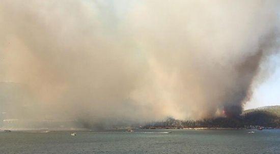 Bodrum'daki yangın kontrol altına alındı