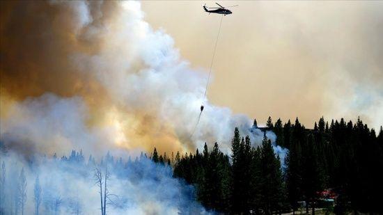California'da devam eden orman yangınlarında onlarca ev kullanılamaz hale geldi