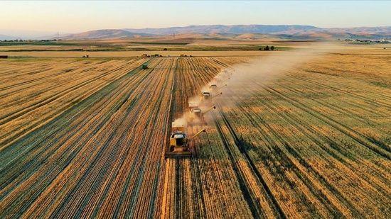 Çiftçiye 600 milyon liralık faizsiz kredi