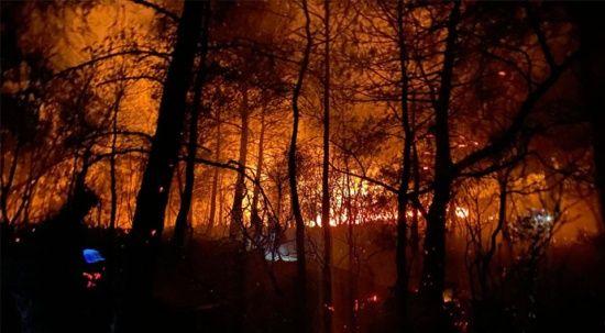 Fethiyeliler yangını söndürmek için seferber oldu