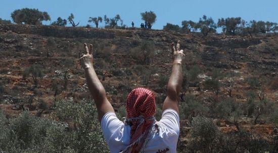 İşgalci İsrail, 11 Filistinliyi daha yaraladı