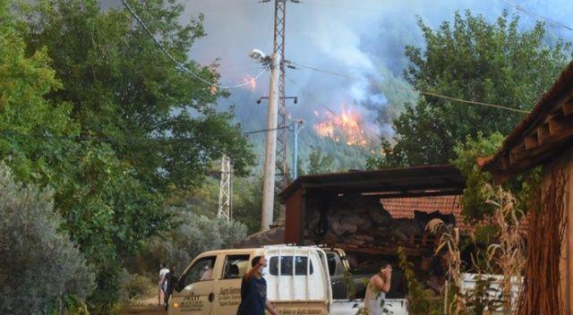 5 mahalle tahliye edildi, 2 bin hektarlık alan yandı