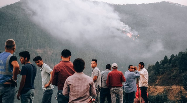 Aydın Valisi Aksoy: Karacasu'daki yangında 450 hektar alan zarar gördü