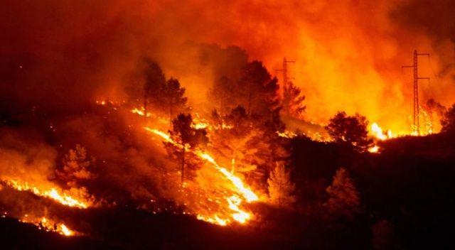 Dünyanın ciğerleri alev alev yanıyor!