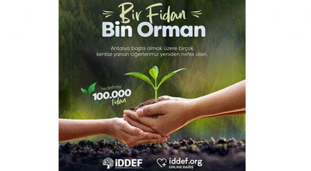 İDDEF'ten 'Bir Fidan Bin Orman' projesi