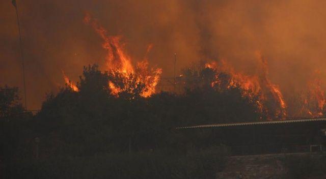 Milas tehlikede! Alevler termik santrale ilerliyor