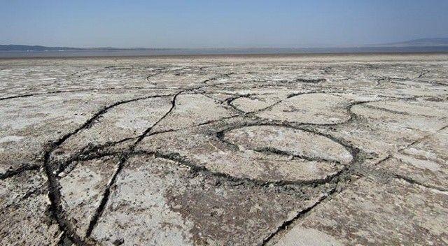 Türkiye'nin tek doğal sodyum kaynağı 'Acıgöl' kuruyor