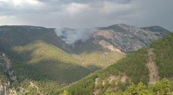 Adana'da orman yangını! Müdahale sürüyor