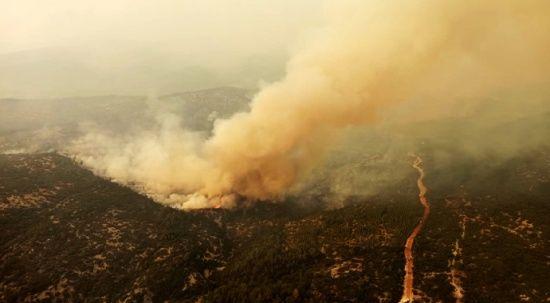 Bakan Pakdemirli açıkladı: Manavgat ve Gündoğmuş yangınları kontrol altına alındı