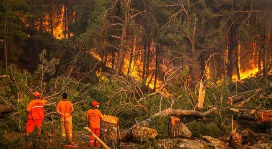 Bakanlar orman yangınlarıyla ilgili son durumu açıkladı