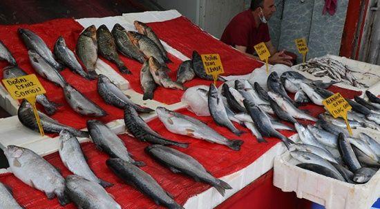 Balıkçıların yüzü palamuttan yana gülmüyor