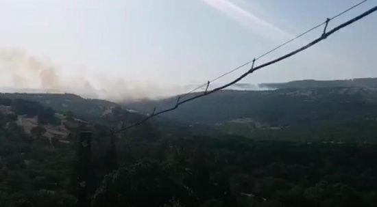Balıkesir Savaştepe'de orman yangını çıktı