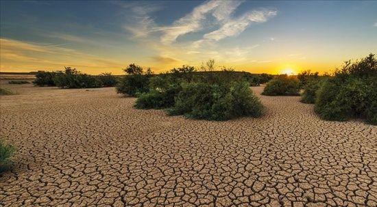 BM'den iklim değişikliği uyarısı: Sıcak hava dalgaları artacak