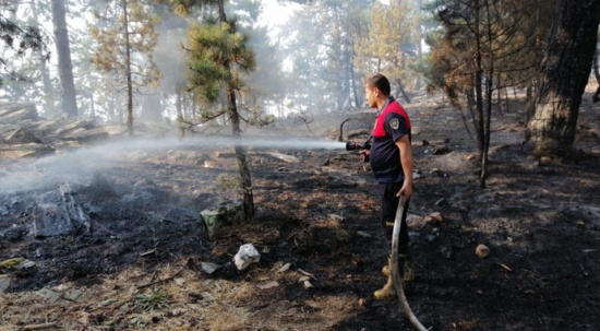 Karacasu'daki yangın sürüyor