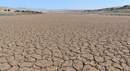 Kuraklık alarmı: 64 kilometrekarelik baraj çöle döndü