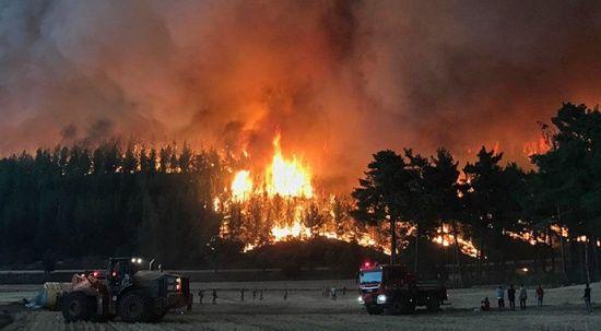 Muğla Kavaklıdere'de yangın evlere yaklaştı! Bir mahalle boşaltılıyor